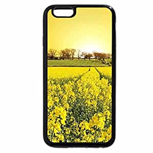 iPhone 6S / iPhone 6 Case (Black) Yellow Canola Field