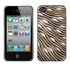 X-ray Impreso colorido protector duro espalda Funda piel de Shell para Apple iPhone 4 / iPhone 4S / 4S - Dunes Desert Biology Abstract 3D