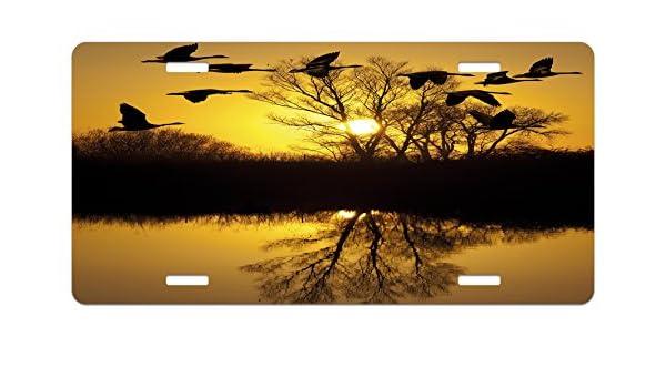 Amazon com: Lunarable Landscape License Plate, Canadian