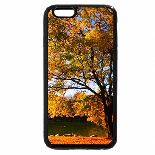 iPhone 6S / iPhone 6 Case (Black) a lonely autumn tree