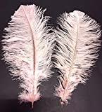 100 pc, Trimmed Ostrich Drab Feathers, 12-17'' Long, Dyed, Craft Feathers, DIY, Bulk, Wholesale, per 100 Feathers (Baby Pink)