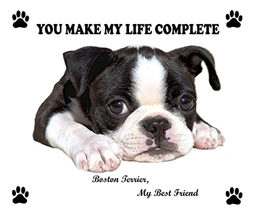 (So Cute BOSTON TERRIER Dog Puppy Rubber Computer MOUSE PAD Mat New)