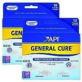 API Powder General Cure 20 pack