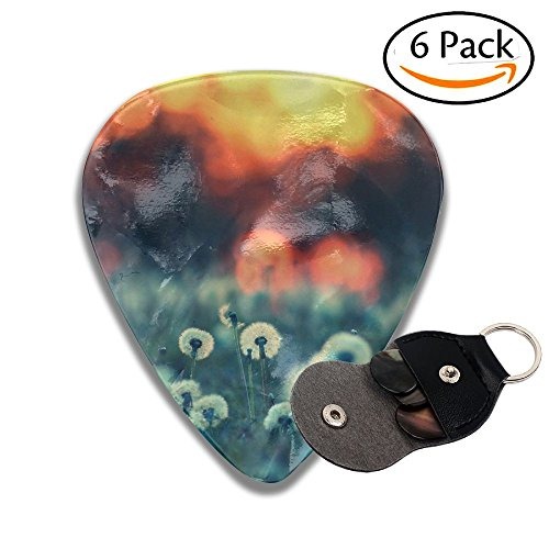 Grghtrghlsd Dandelion Seed Sunset Landscape Classic Guitar Picks For Electric/acoustic Guitar,and Bass