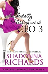 Accidentally Flirting with the CEO 3 (Whirlwind Romance Series Book 5) (English Edition)