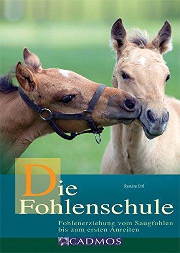 die-fohlenschule-fohlenerziehung-vom-saugfohlen-bis-zum-ersten-anreiten-cadmos-pferdebuch