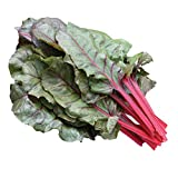 Burpee Red Magic Swiss Chard Seeds 100 seeds