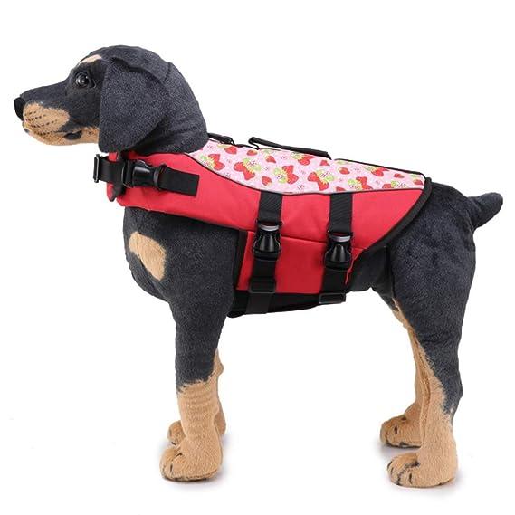 La Vida del Perro del Chaleco De Seguridad Admiten Mascotas Traje De Baño De La Chaqueta del Conservante De Vida con La Correa Ajustable: Amazon.es: ...