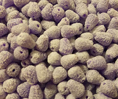 (Small Sugared Gumdrop Sugar Coated Candy Christmas Craft Beads, 288 Pcs (Purple))