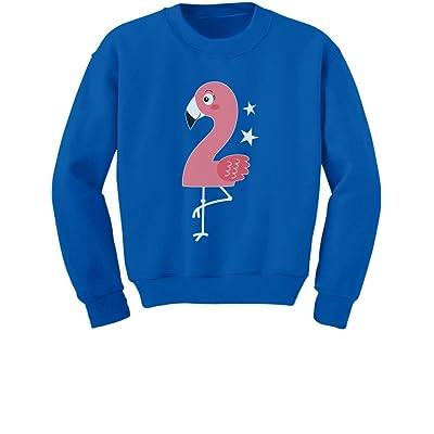 Tstars Flamingo 2nd Birthday Gift For Two Year Old Toddler Kids Sweatshirt