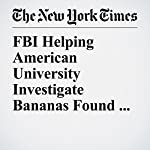 FBI Helping American University Investigate Bananas Found Hanging from Nooses | Jacey Fortin