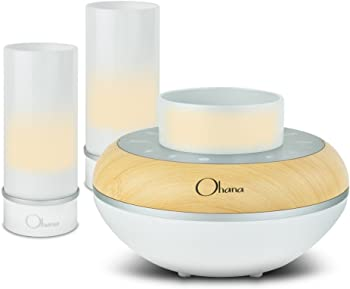 BEM Wireless Ohana Island Twilight Bluetooth Speaker System