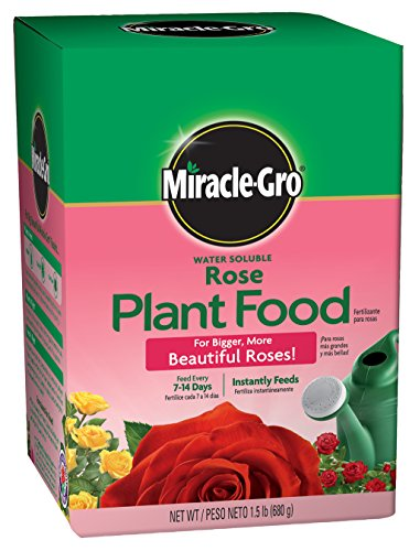 - Miracle-Gro 2000221 Rose Plant Food Rose Fertilizer (6 Pack), 1.5 lb