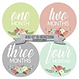 Months In Motion - Baby Month Stickers - Monthly Baby Sticker for Girls - Floral (1105)