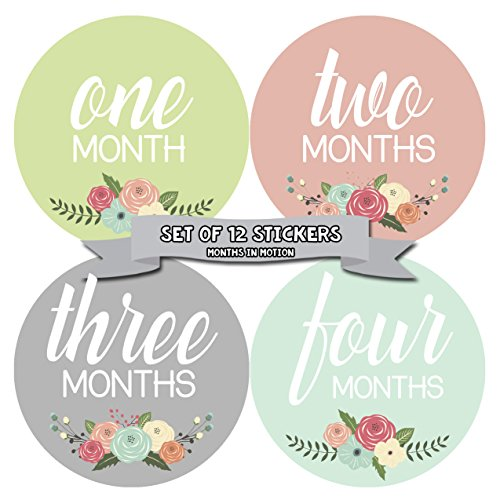 - Months In Motion Baby Month Stickers | Monthly Milestone Sticker for Girl | Onesie Month Sticker | Infant Photo Prop for First Year | Shower Gift | Newborn Keepsakes | Baby Gift Registry | Floral