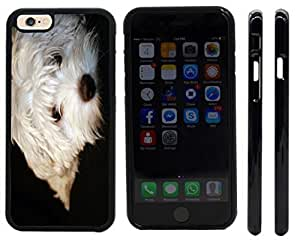 Rikki KnightTM Maltese Puppy Design iPhone 6 Case Cover (Black Rubber with front bumper protection) for Apple iPhone 6