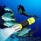 Oumers 1100 Lumen CREE XM-L2 Professional Diving