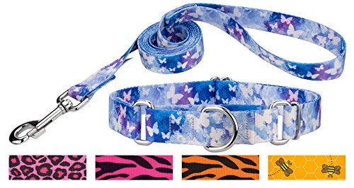 Country Brook Petz | Watercolor Butterflies Martingale Dog Collar & Leash - Medium -