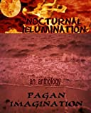 img - for Nocturnal Illumination: An Anthology book / textbook / text book