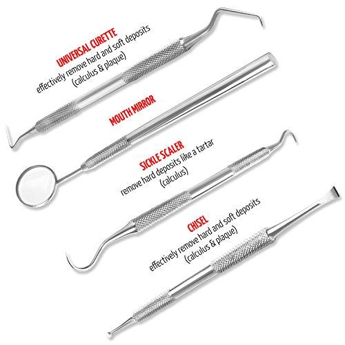 Essential Dental Hygiene Personal Scraper