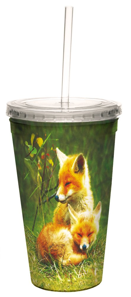 Tree-Free Greetings Insulated Travel Drink Tumbler with Straw, 16 oz, Foxes Relaxing