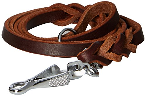 Dean & Tyler Nocturne Dog Leash with Stainless Steel Ring on Handle and Herm Sprenger Snap Hook, 5-Feet by 1/2-Inch, Brown by Dean & Tyler