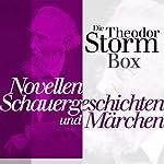 Die Theodor-Storm-Box: Novellen, Schauergeschichten und Märchen von Theodor Storm | Theodor Storm