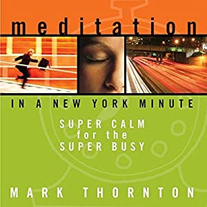 Meditation in a New York Minute Rede