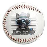 Nvthenpiaoliang Bad Dog Criminal Plice Soft Standard Practice Ball Baseball Game Ball