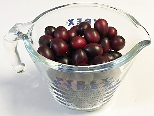 Cranberry, Artificial Fruit Fake Food, Bag of 72 by Bluebird Artificial Foods (Image #1)