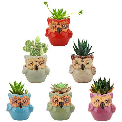 Lewondr Succulent Plant Pot, 6 Pack 2.8 Inch Mini Small Ceramics Owl Flower Bonsai Plant Pots for Cactus Herbs Housewarming Gift Planter Container Set for Home Office Desk Shelf Window Décor, 04