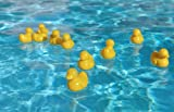 eWonderWorld Baby Bath Toys: Plastic Ducky - 12 Pieces Lead Free and Non-toxic