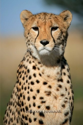 Cheetah Journal: 100 page lined notebook/diary