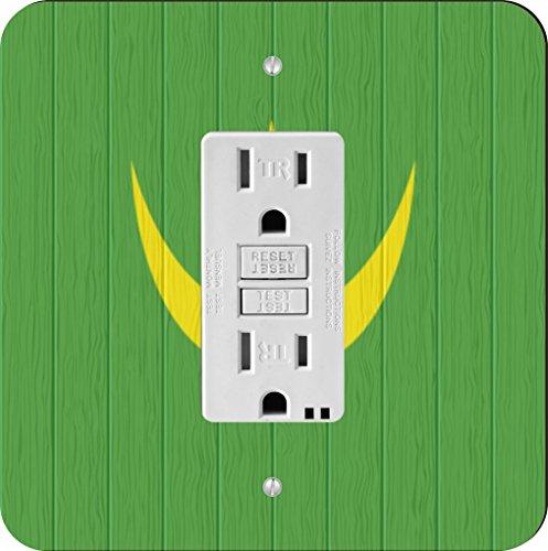 Rikki Knight 8748 GFI Single Mauritania Flag On Distressed Wood Design Light Switch Plate by Rikki Knight