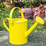 Topadorn Metal Wating Can with Handle