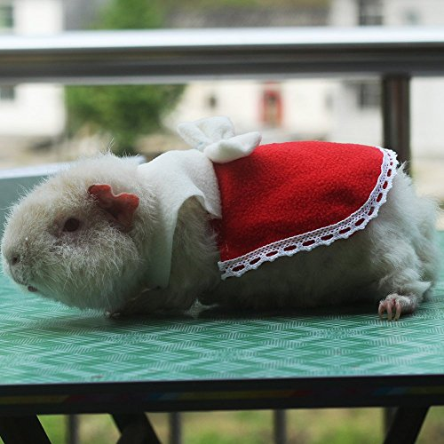Cute Hamster Costumes Clothes Supply Halloween Glitter Pumpkin Costume for Small Animals like Mouse/Chinchilla/Rat/Gerbil/Dwarf Hamster for $<!--$6.98-->