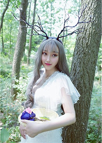 Horse Fairy Costume (Forest Fairy Christmas Carnival Halloween Cosplay Fancy dress party Decor Antlers Hair band Headdress Blue-Black Simulation Tree Branch)