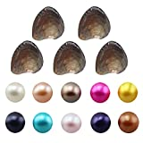 #4: NeuFashion Wholesale Freshwater Cultured Love Wish Pearl Oyster Round Pearls Various 10 Shining Meaningful Color, Birthday Gifts Pearl Party,Oysters with Pearls Inside (7-8mm, 10 PCs/lot)