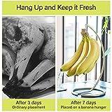 TPSKY Banana Tree Hanger, Stainless Steel Banana