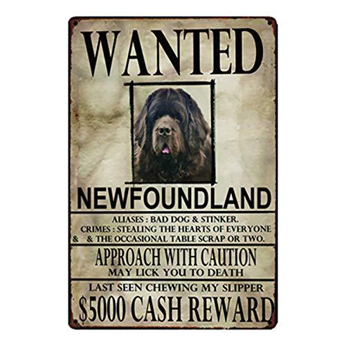- xiaozeze Newfoundland Dogs Wanied Metal Sign Tin Poster Home Decor Bar Wall Art Painting 2030 cm Size