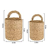 LA JOLIE MUSE Seagrass Woven Storage Baskets Set of 2, Wall Hanging Baskets Organizer, Garden Plant Baskets