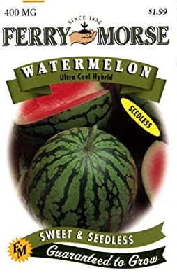 Ferry-Morse Watermelon Ultra Cool Hybrid Seeds