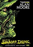 img - for Saga of the Swamp Thing, Book 1 book / textbook / text book