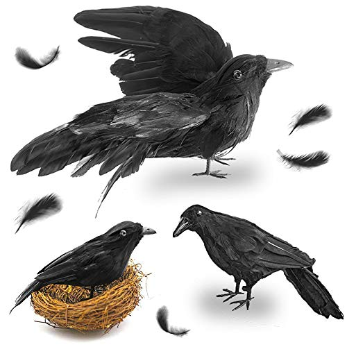 Fake Black Birds Halloween (FuturePlusX Halloween Crows, 3-Style Realistic Handmade Crow with Glass Bird's Nest, Black Crows Decorations Crow Prop, Artificial Birds Fake Ravens Imitation)