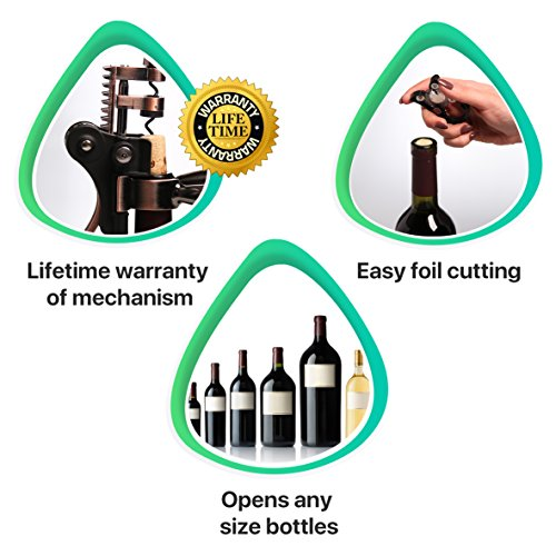 Buy the best corkscrew