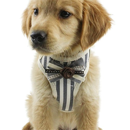 Pet Dog Traction Rope JOYFEEL Puppy Cat Strap Control Walk Leash Vest Dog Collar Stripe Safety Dog Training Belt (Gray, S) -