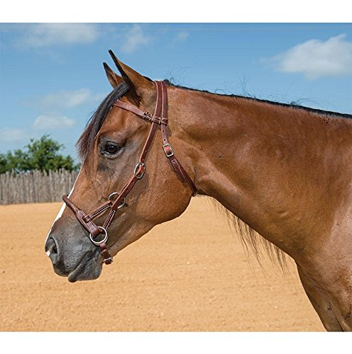 SOUTH TEXAS TACK STT Round Leather Nose Sidepull