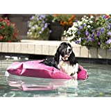 Pet Pool and Deck Lounger