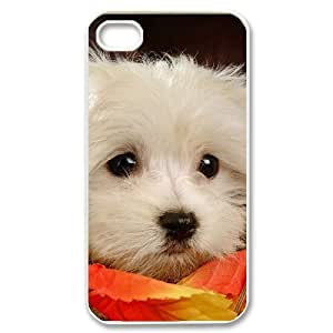 Hard Shell Case Of Cute Dog Customized Bumper Plastic case For Iphone 4/4s