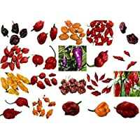 !!! PLEASE READ! THIS IS A MIX!!! Harley Seeds 15+ WORLD SUPER HOTTEST Pepper MIX Seeds 26 Varieties ORGANICALLY GROWN SUPER HOT From USA Trinidad Scorpion Carolina Reaper King Naga Bhut Jolokia 7 Pot